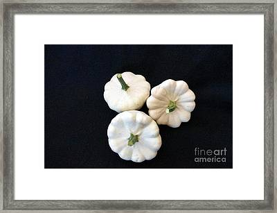 Framed Print featuring the photograph Gourds 10 by Deniece Platt