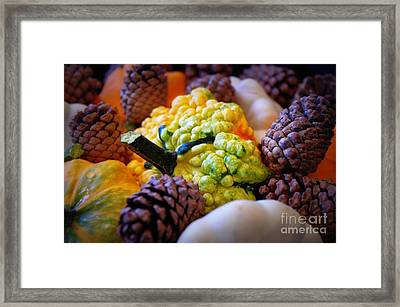 Framed Print featuring the photograph Gourds 2 by Deniece Platt