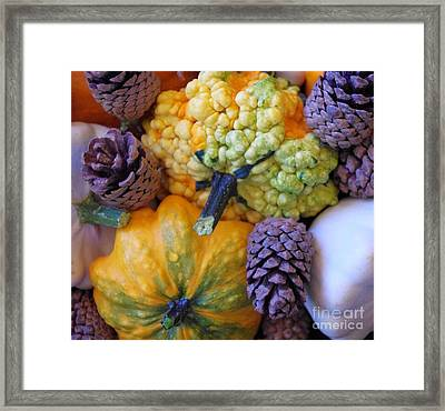 Framed Print featuring the photograph Gourds 4 by Deniece Platt