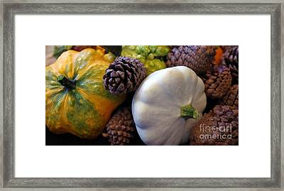 Framed Print featuring the photograph Gourds 6 by Deniece Platt