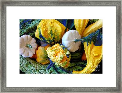 Framed Print featuring the photograph Gourds 8 by Deniece Platt