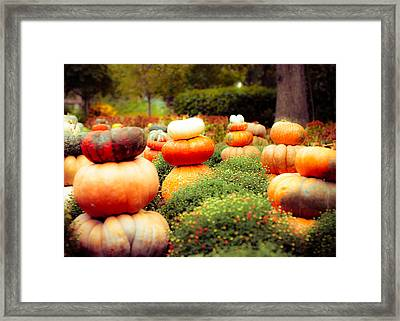 Gourds And Flowers Framed Print