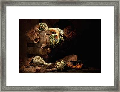 Gourds And Leaves Still Life Framed Print
