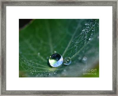 Gouttes D'eau Framed Print by Sylvie Leandre