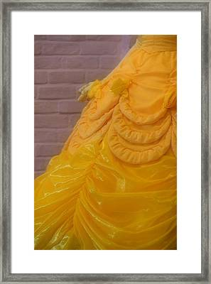 Gown Of A Princess Framed Print by Bonnie Myszka
