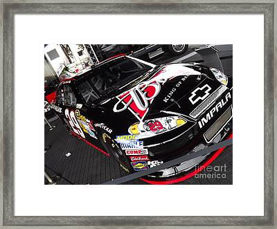 Grab Some Buds Framed Print by Chad Thompson