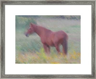 Grace In The Meadow Framed Print by Debra     Vatalaro