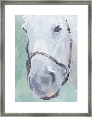 Grace Framed Print by Sandra Harris