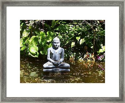 Framed Print featuring the photograph Grace by Sheila Silverstein