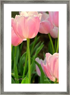 Grace.... Framed Print