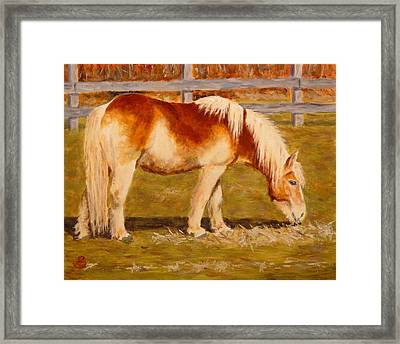 Framed Print featuring the painting Grahm by Joe Bergholm