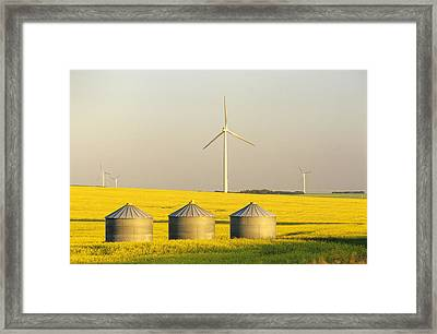 Grain Bins And Wind Turbines In Canola Framed Print by Dave Reede
