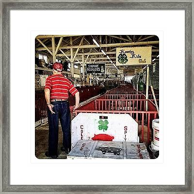 Gramps In The Swine Barn Framed Print
