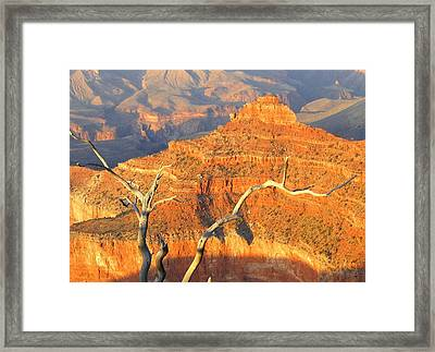 Grand Canyon 40 Framed Print