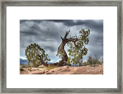 Grand Canyon Facing The Storm Framed Print by Bob Christopher