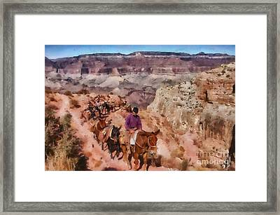 Grand Canyon Mule Packtrain Framed Print by Mary Warner