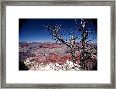 Framed Print featuring the photograph Grand Canyon Number One by Lon Casler Bixby