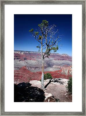 Framed Print featuring the photograph Grand Canyon Number Two by Lon Casler Bixby