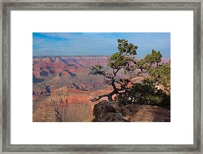 Grand Canyon Framed Print by Olga Vlasenko