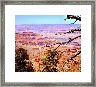 Framed Print featuring the photograph Grand Canyon by Rima Biswas