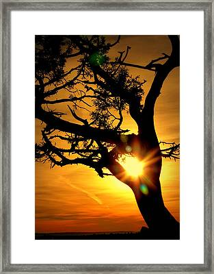 Framed Print featuring the photograph Grand Canyon Sunset by Cindy Wright