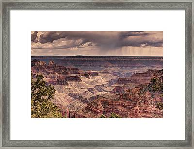 Grand Canyon Framed Print by Tracy Lynn Hart
