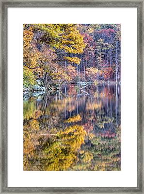 Grand Reflections Framed Print