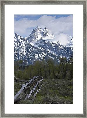 Grand Teton Fence Framed Print by Charles Warren