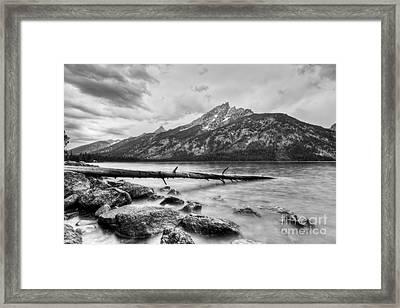 Grand Tetons Above Jenny Lake Jackson Hole Framed Print