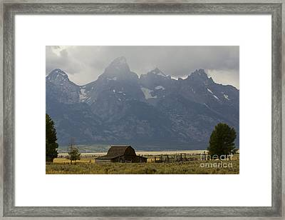 Grand Tetons Jackson Wyoming Framed Print