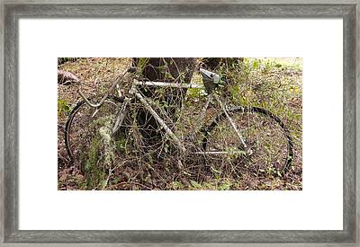 Framed Print featuring the photograph Grandma's Neglected Ride by Jeremiah Colley