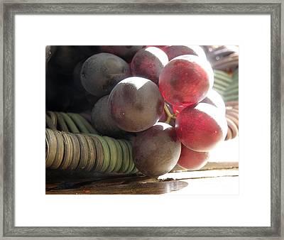 Grape Glow Framed Print by Lainie Wrightson