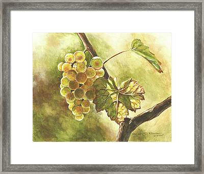Grapes Framed Print by Deb Richter