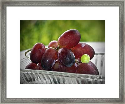 Grapes Framed Print by Gwyn Newcombe