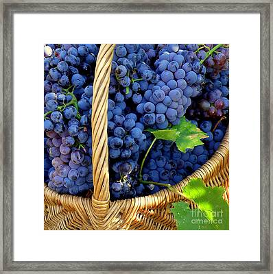 Grapes In A Basket Framed Print by Lainie Wrightson