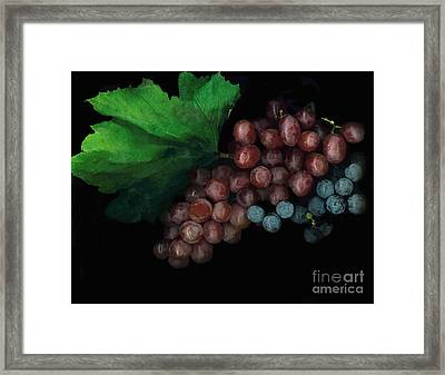 Grapes In Black Framed Print by Casey DiDonato