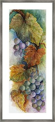 Grapes Iv Framed Print by Judy Dodds