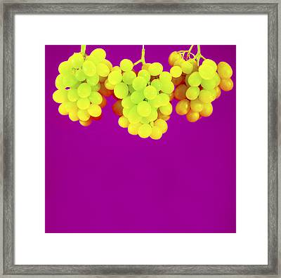 Grapes Framed Print by Johnny Greig