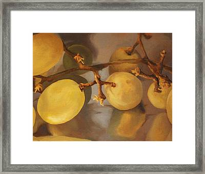 Grapes On Foil Framed Print