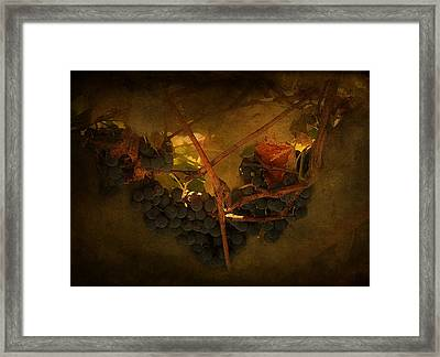 Grapes Framed Print by Peter Labrosse