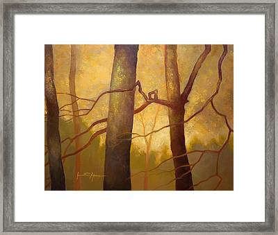 Graphic Trees Framed Print