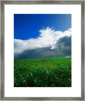 Grassy Field, Ireland Framed Print by The Irish Image Collection