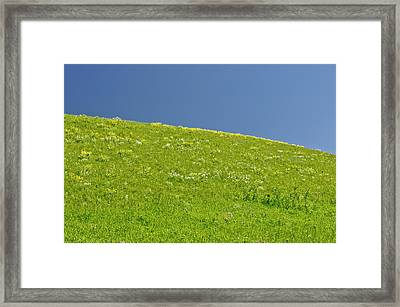 Grassy Slope View Framed Print by Roderick Bley
