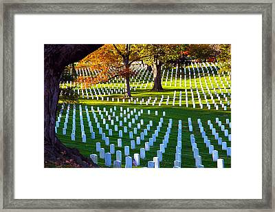 Gratitude Framed Print by Mitch Cat