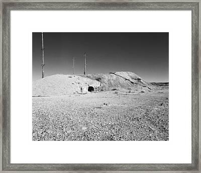 Gravel Gerties Framed Print by Jan W Faul