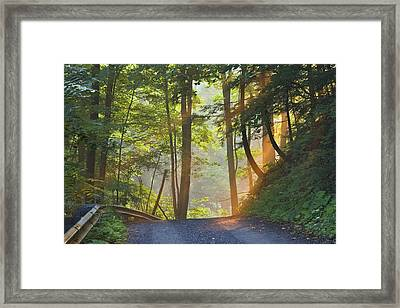 Gravel Road At Sunrise, Pelham, Ontario Framed Print by Darwin Wiggett