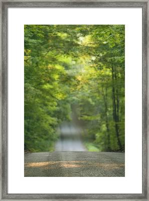 Gravel Road, Niagara Region, Pelham Framed Print by Darwin Wiggett