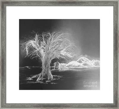 Gravesite Framed Print by John Krakora