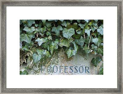 Gravestone Framed Print by Matthias Hauser