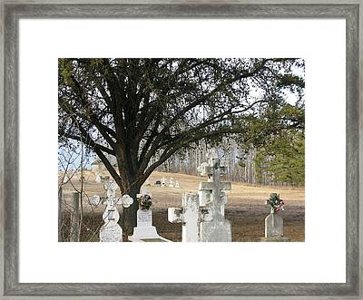 Framed Print featuring the photograph Graveyard by Brian Sereda